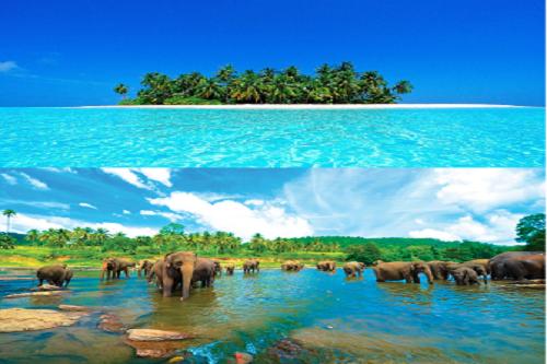 مالدیو و سریلانکا