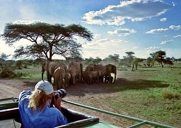 در جستجوی جاذبه های گردشگری آفریقای جنوبی هستید؟